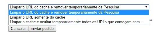 Ferramenta remover página do Google
