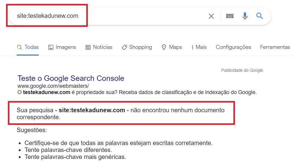 Teste para saber se o site está no Google